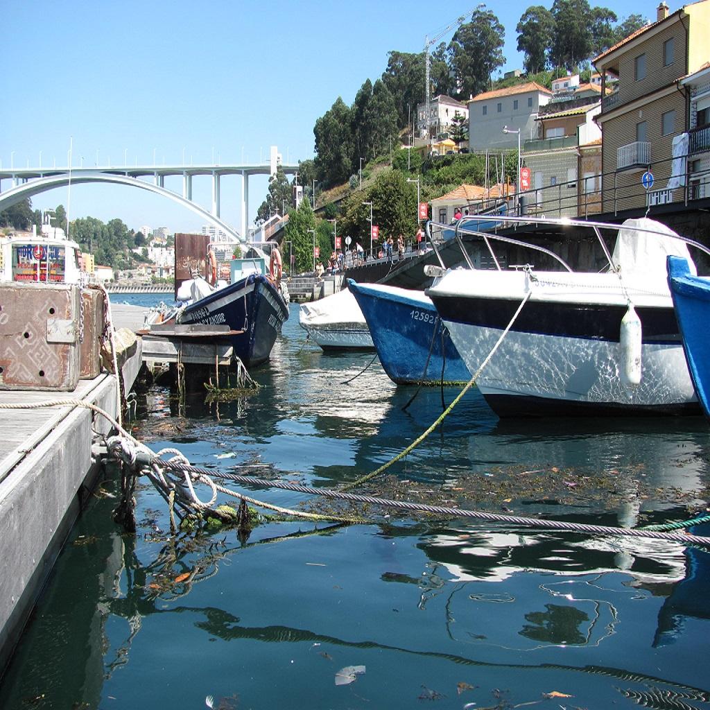 Barcos_de_Pesca_na_Afurada